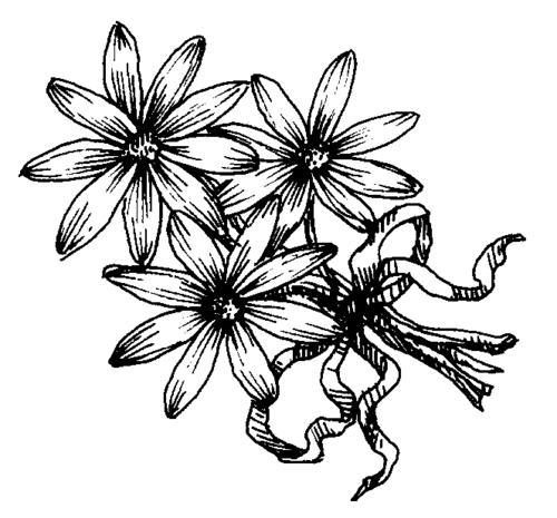 LOT Cox Flowers clip9